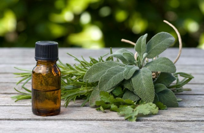 óleo essencial com plantas