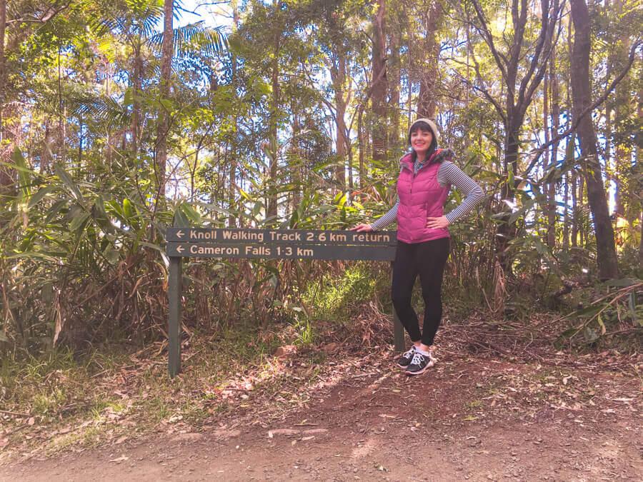 trilha em tamborine mountain